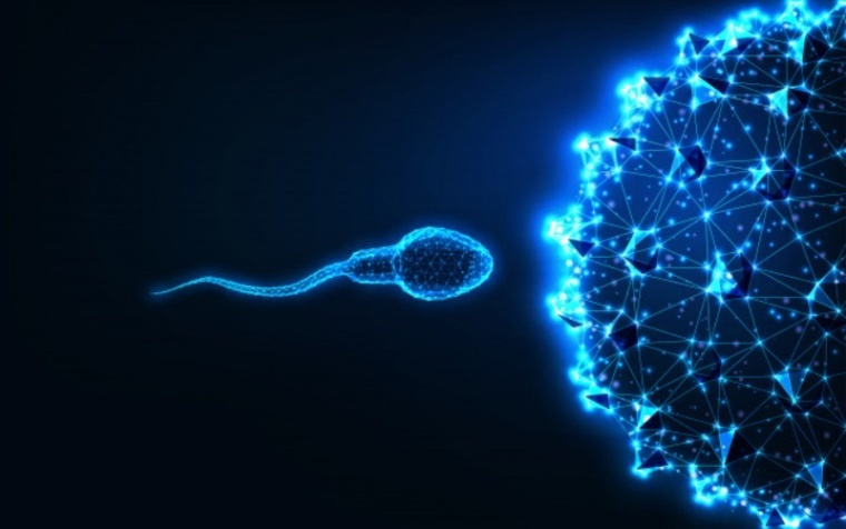 Diabetes Affecting Male Fertility
